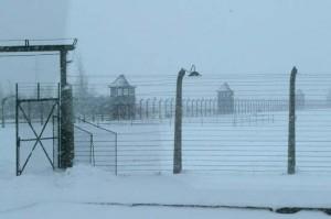 Auschwitz sous la neige